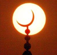 В Мичигане мусульманин убил падчерицу за неисполнение норм ислама