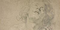 В США проходит выставка рисунков Рубенса, ван Дейка и Йорданса